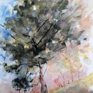 Esquisse d'un arbre
